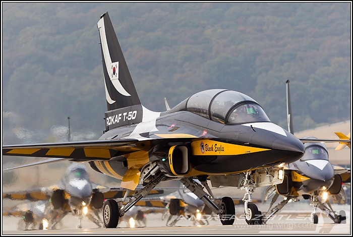 1ADEX Black Eagles 6867 Zeitler 700 470 90