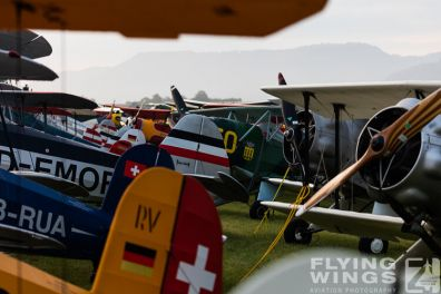 http://flying-wings.com/plugins/content/sige/plugin_sige/showthumb.php?img=/images/airshows/19_Hahnweide/Flightline_4/Hahnweide19_Flightline_Morgen-8828_Zeitler.jpg&width=396&height=300&quality=80&ratio=1&crop=0&crop_factor=50&thumbdetail=0