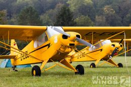 http://flying-wings.com/plugins/content/sige/plugin_sige/showthumb.php?img=/images/airshows/19_Hahnweide/Oshkosh_6/Hahnweide19_Flightline_Morgen-8859_Zeitler.jpg&width=260&height=300&quality=80&ratio=1&crop=0&crop_factor=50&thumbdetail=0