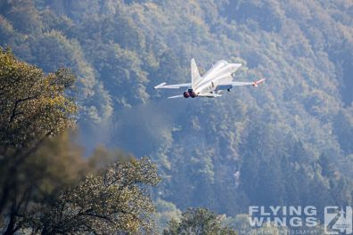 http://flying-wings.com/plugins/content/sige/plugin_sige/showthumb.php?img=/images/airshows/20_Meiringen/2/Meiringen_Tiger-0110_Zeitler.jpg&width=396&height=300&quality=80&ratio=1&crop=0&crop_factor=50&thumbdetail=0