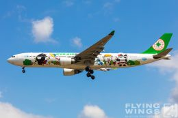 http://flying-wings.com/plugins/content/sige/plugin_sige/showthumb.php?img=/images/galleries/19_Taiwan/TPE_11/Taiwan_2019_EVA Air-5812_Zeitler.jpg&width=260&height=300&quality=80&ratio=1&crop=0&crop_factor=50&thumbdetail=0